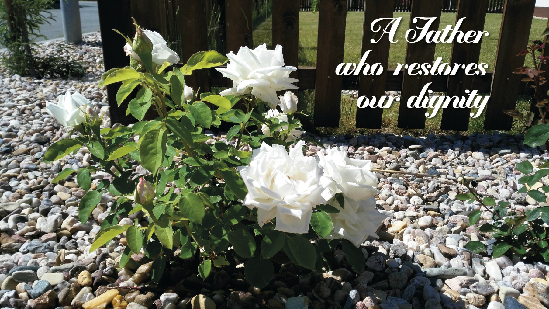 A Father who restores our dignity